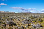 View of the Altiplano, Estancia La Estela, Santa Cruz Region, Argentina.