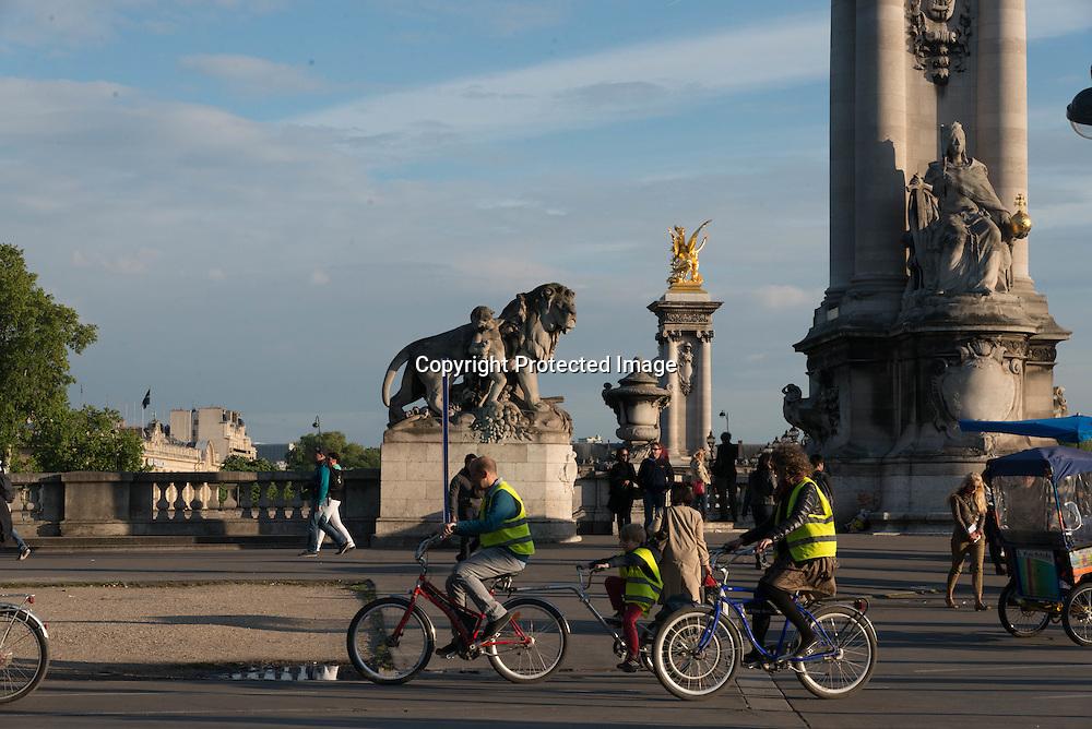 France. Paris Pont Alexandre-III bridge on Seine River  / pont Alexandre 3 Paris