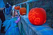 Fairy Princess.  A trick or treater admires a jack o'lantern at the annual Bynum Pumpkins on the Bridge celebration. Bynum, North Carolina.