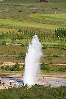 Islande, Site de Geysir, Le geyser Strokkur // Iceland, Site of Geysir, Strokkur geyser