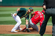 Oakland Athletics second baseman Franklin Barreto (1) tried to tag Los Angeles Angels center fielder Eric Young Jr. (8) out during a stolen base attempt at Oakland Coliseum in Oakland, California, on September 6, 2017. (Stan Olszewski/Special to S.F. Examiner)