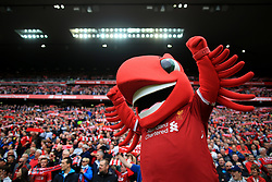 19th August 2017 - Premier League - Liverpool v Crystal Palace - Liverpool mascot Mighty Red - Photo: Simon Stacpoole / Offside.
