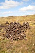 Peat cutting trenches, near Mid Walls, Mainland, Shetland Islands, Scotland
