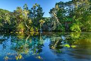 Oceania; New Zealand; Aotearoa; South Island; Golden Bay, Tanaka, Te Waikoropupu Springs