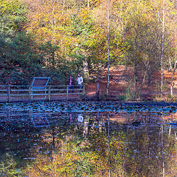© Licensed to London News Pictures. 27/10/2014. Burnham, UK People walk through the autumnal trees in the mooring sunshine at Burnham Beeches an area of 220 hectares of ancient woodland in Burnham, Buckinghamshire. Today 27th October 2014. Photo credit : Stephen Simpson/LNP