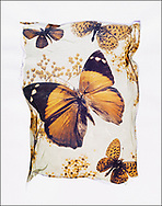FLOWERPRESS BUTTERFLIES - Brown Butterfly - polaroid lift photo art print by photographer Paul E Williams. These rare and striking polaroid lift was taken iby Paul Williams in 1992 and was awarded a Polaroid European Final Art Award. .<br /> <br /> Visit our FINE ART PHOTO  PRINT COLLECTIONS for more wall art photos to browse https://funkystock.photoshelter.com/gallery-collection/Fine-Art-Photo-Prints-by-Photographer-Paul-Williams/C0000UM829OLMVv8