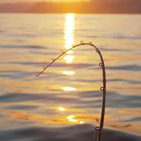 Everett Marina at dawn, Everett, Washington. Photo by William Byrne Drumm.