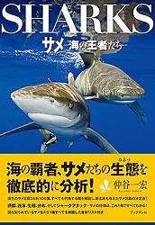 Sharks, June 2011, book cover use, Japan, Image ID: Oceanic-Whitetip-Shark-0067