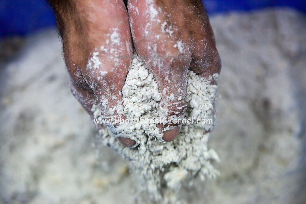 Baking Concept - Baker rubs his hands in flour