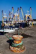 """Fishing boats tied up in Kilmore Quay, Wexford, Ireland This mage can be licensed via Millennium Images. Contact me for more details, or email mail@milim.com For prints, contact me, or click """"add to cart"""" to some standard print options."""
