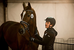Heijkoop Danielle, NED, Daula<br /> Jumping Mechelen 2017<br /> © Sharon Vandeput<br /> 26/12/17