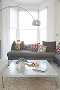 The first floor sitting room looking out onto the front of the house at actor Jacob Krichefski's North London home. Family dog Styler poses. CREDIT: Vanessa Berberian for The Wall Street Journal. KRICHEFSKI
