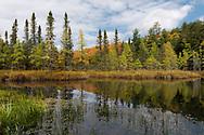 An autumn scene in Sylvania Wilderness.<br /> Michigan's Upper Peninsula