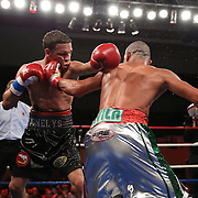 """Jonathan """"Polvo"""" Oquendo (black shorts) and Guillermo """"El Borrego"""" Avila fight for the WBO Latin Featherweight title during the """"Boxeo Telemundo"""" boxing match between at the Kissimmee Civic Center on Friday, March 14, 2014 in Kissimmme, Florida.  Oquendo won the fight by unanimous decision. (AP Photo/Alex Menendez)"""
