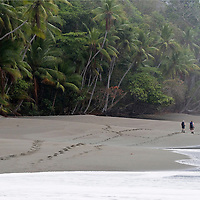 Backpacking through the jungles and along the coast of Corcovado National Park, Costa Rica.  Photo by William Drumm.