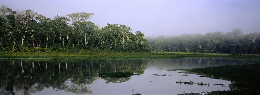 Otorongo Lake<br />Manu National Park, Amazon Rain Forest. PERU<br />South America
