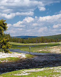 Nez Perce Creek Fly-fisherman,  Yellowstone National Park