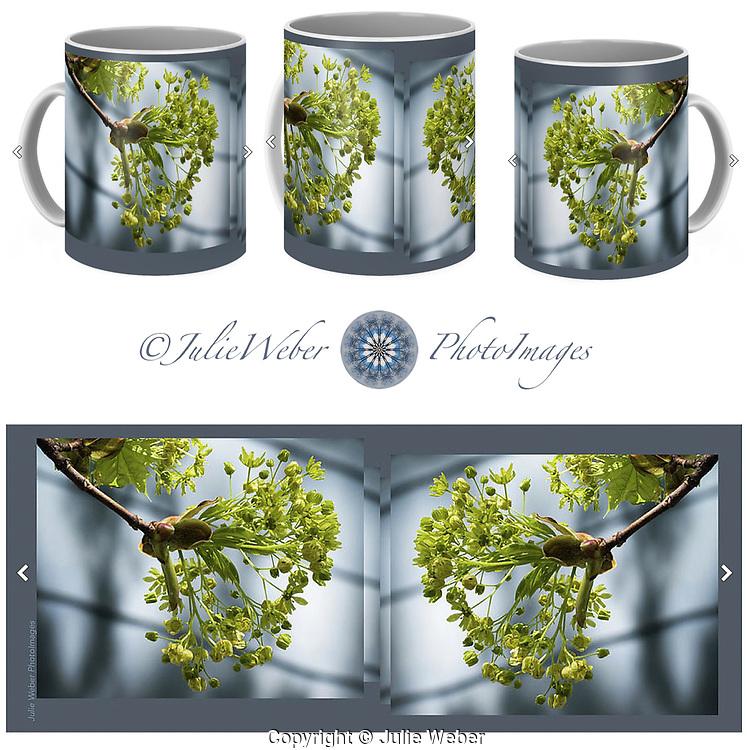 Coffee Mug Showcase 12 - Shop here:  https://2-julie-weber.pixels.com/featured/maple-tree-flowers-julie-weber.html