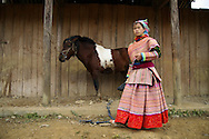 A Hmong woman stands besides her horse at Bac Ha's market, Vietnam, Southeast Asia