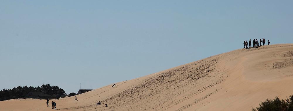 Jockey's Ridge NC.  Photograph by Dennis Brack
