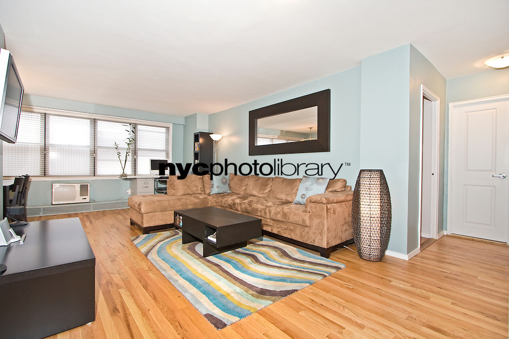 Living Room at 330 Third Avenue