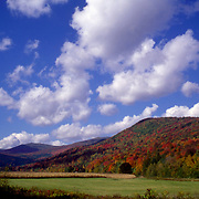 An old cornfield in the Green Mountains of Vermont near Rochester.