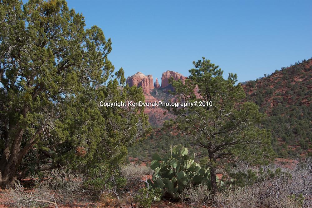 Phoenix Photo Shoot