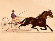 George Wilkes The Great Trotting Sire