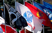 Flags are displayed in the Veterans Day Parade, which honors American military veterans, in Tucson, Arizona, USA.