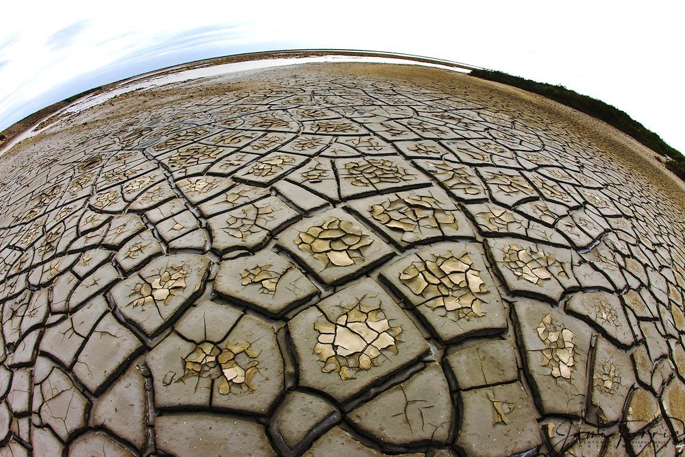 Cracked mud patterns form on lake bed of the Étang de Vaccarés , La Camargue, Provence, France