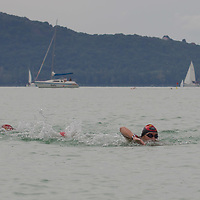 FINA World Open Water Championships Balatonfured 2014