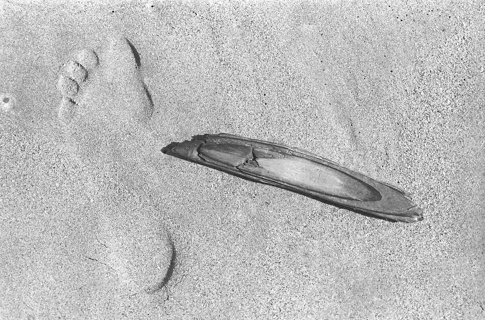 Footprint in the sand with driftwood.