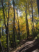 Autumn view of the Ice Age National Scenic Trail, as it winds neard Gibraltar Rock, Columbia County, Wisconsin.