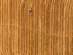 June 5, 2017 - Liaochen, Liaochen, China - Liaocheng, CHINA-June 5 2017: (EDITORIAL USE ONLY. CHINA OUT) ..Peasants are busy with wheat harvest in Liaocheng,east China's Shandong Province, June 5th, 2017. (Credit Image: © SIPA Asia via ZUMA Wire)