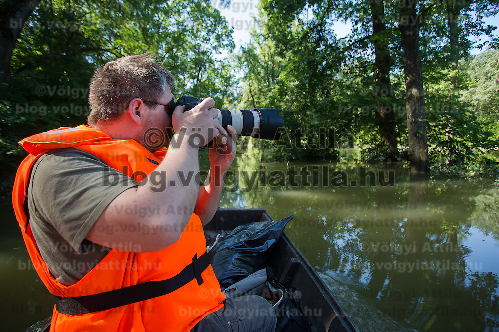 Photographer takes a photo of the flooding in the forest in Gemenc (about 218 km South of the capital city Budapest), Hungary on June 14, 2013. ATTILA VOLGYI
