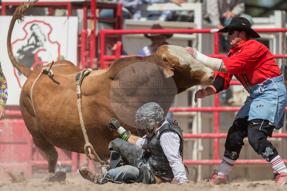 Bull rider Cody Rostockyj of Lorena, Texas is thrown from Buck Wild at the Cheyenne Frontier Days rodeo at Frontier Park Arena July 24, 2015 in Cheyenne, Wyoming. Frontier Days celebrates the cowboy traditions of the west with a rodeo, parade and fair.