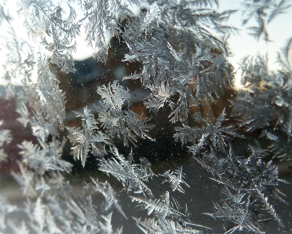 Frost on a car window with reflection of a house, Bar Harbor, Maine.