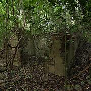 Par Force plantation