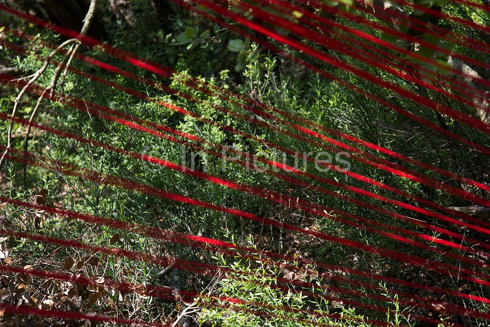 Art sculpture, part of an artists scupltures walk in the landscape. Mayronnes, Languedoc-Roussillon, France.