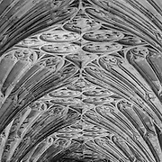 Gloucester Cathedral Cloisters, Gloucestershire, England