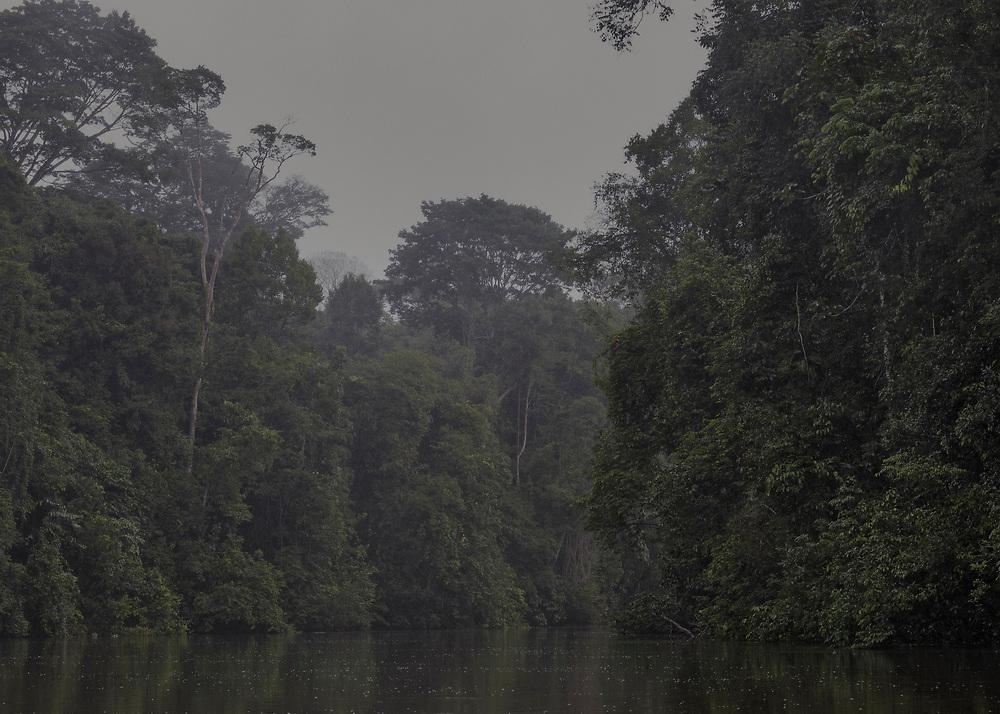 """Fleuve Oyapock, zone à accès réglementé, Guyane, 2015.<br /> <br /> En 1930, un décret divise le territoire guyanais en deux entités administratives distinctes : la Guyane française, le long de la bande côtière jusqu'à 60 km à l'intérieur des terres et le """"Territoire de l'Inini"""", qui couvre 90% de la colonie guyanaise au sud de cette ligne. Cette division officialise la coexistence des deux espaces : le Littoral structuré par la colonisation française et l'Intérieur jamais totalement maîtrisé. Pour le gouvernement en place, il s'agit de créer une colonie dans la colonie pour organiser directement l'exploitation de l'Intérieur en le soustrayant à l'agitation politique locale qui ne concerne plus que le littoral. Le territoire de l'Inini est placé sous le contrôle direct du sous-préfet de Saint-Laurent du Maroni qui joue le rôle de gouverneur. Cette nouvelle entité englobe les territoires de trois peuples amérindiens de Guyane, les Wayana, les Wayãmpi et les Teko à qui on permet de vivre selon les règles de leur droit coutumier. La circulation dans le sud du territoire est soumise à l'autorisation.<br /> <br /> En 1946, la colonie devient département. Le nouveau DOM reste séparé en deux arrondissements : celui de Cayenne, qui correspond au littoral, et celui de l'Inini qui reprend les limites du """"Territoire de l'Inini."""" En 1969, à l'occasion d'un nouveau découpage administratif du territoire guyanais en deux arrondissements Est et Ouest, l'Intérieur est intégré au département. En 1970, motivé par des justifications culturelles, sanitaires et sécuritaires, un arrêté préfectoral délimite une """"zone à accès réglementé"""" et coupe de nouveau la Guyane en une partie nord librement accessible et en une partie sud à accès contrôlé par la Préfecture. La zone située au sud d'une ligne définie par Camopi sur le fleuve Oyapock et le confluent de la crique Waki et du fleuve Maroni est soumise à autorisation. Cet arrêté, abrogé en 1977, remplacé et complété en 1978 est toujours en vi"""