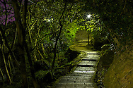 A deserted path through the forest in Taipei, Taiwan.