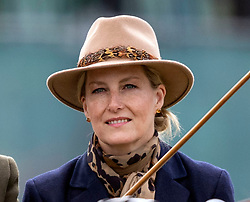 The Countess of Wessex during the Royal Windsor Horse Show at Windsor Castle, Berkshire.