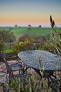 Morning light over Thomas Hill Farms, Paso Robles, San Luis Obispo County, California