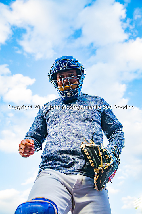 Amarillo Sod Poodles catcher Luis Torrens (21) enters the dugout against the Northwest Arkansas Travelers on Sunday, July 21, 2019, at HODGETOWN in Amarillo, Texas. [Photo by John Moore/Amarillo Sod Poodles]