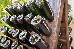 Dec. 04, 2012 - Wine bottles in wine rack (Credit Image: © Image Source/ZUMAPRESS.com)