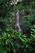 Wailua Falls, Maui, Hawaii<br />