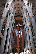 La Sagrada Familia, Roman Catholic basilica under construction in Barcelona, Catalonia, Spain. designed by Antoni Gaudi Interior