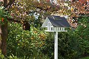small modern birdhouse in a garden of an house