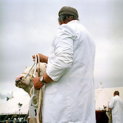 A farmer wearing a white coat shows his prize Hereford bull at Tenbury Agricultural Show, Worcestershire, UK